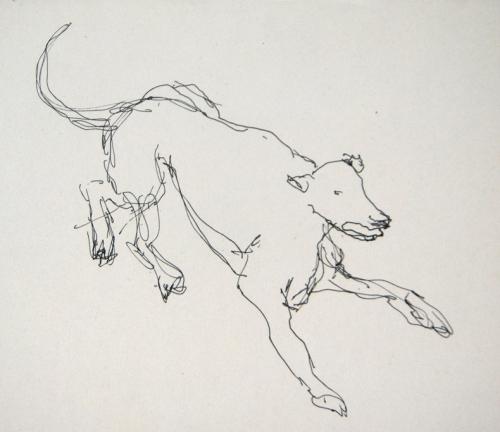 esquisses,croquis préparatoires,chiens