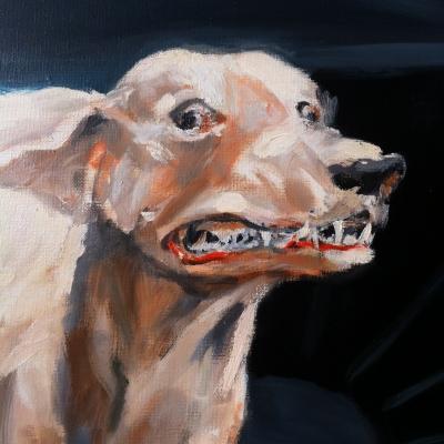 chiens n°7